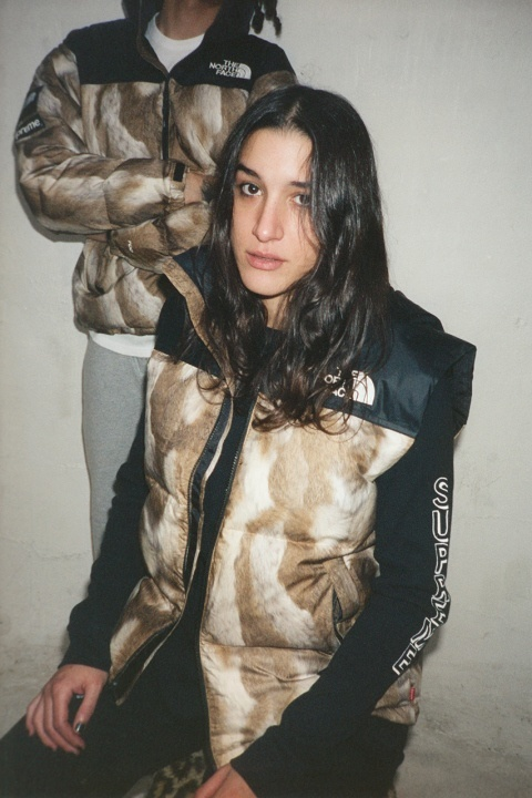 supreme-x-the-north-face-2013-fallwinter-collection-2
