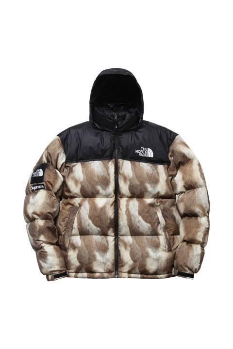 supreme-x-the-north-face-2013-fallwinter-collection-4