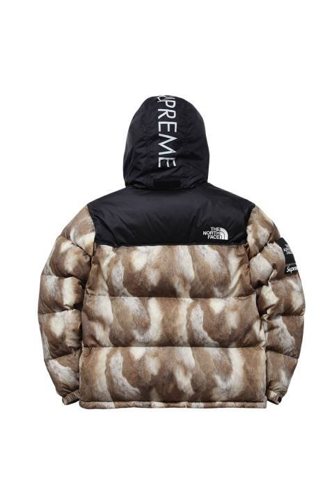 supreme-x-the-north-face-2013-fallwinter-collection-5