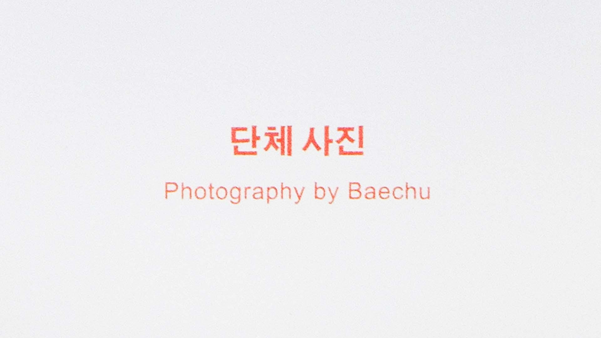 Sunshine Press Zine #5 단체 사진 by Baechu