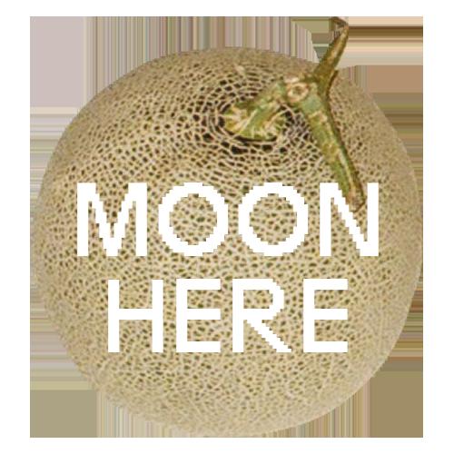 MOON-HERE 문형리